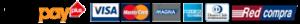 Logos medios de pago tarjetas WebPay - Visa - Mastercard - Magna - American Express - Dinners Club - RedCompra